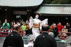 Meiji Jingu Shrine Autumn Grand Festival