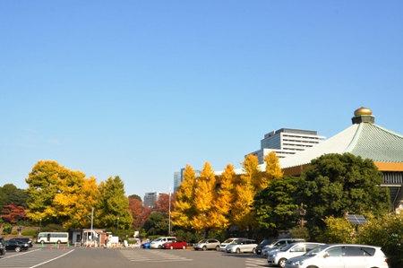 ≪Autumn Foliage Spots≫ Kitanomaru Park