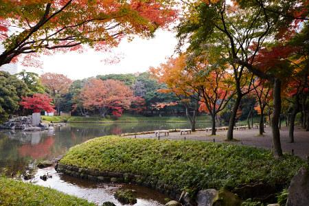 ≪Famous Autumn Foliage Spots≫ Koishikawa Korakuen Gardens