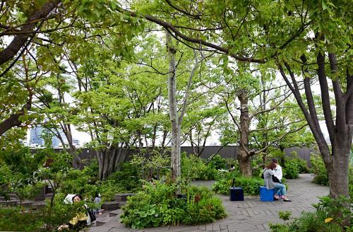 Omohara no mori : Tokyu Plaza Omotesando Harajuku