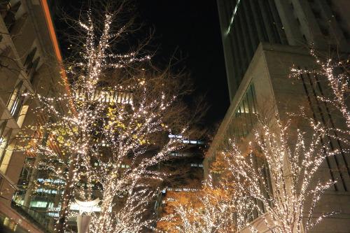 Marunouchi Illumination