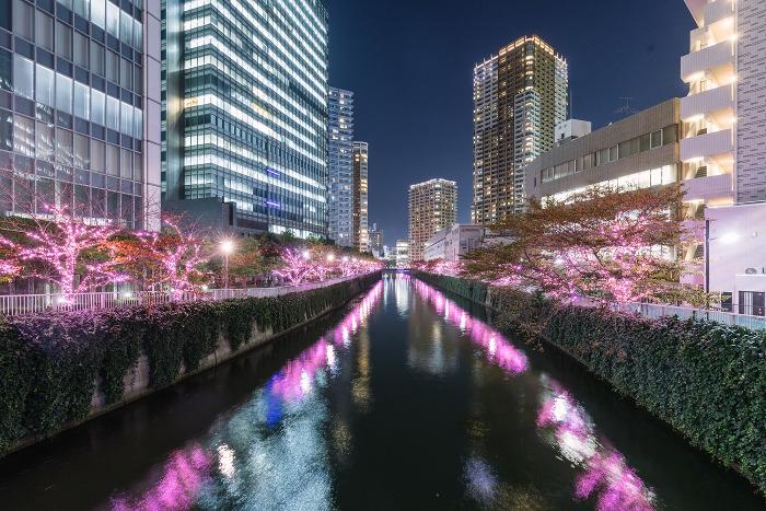 Megurogawa Minna no Illumination (Meguro River)