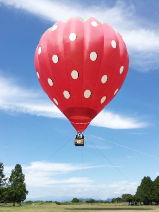 Hot Air Balloon Tethered Ride at Yokohama Red Brick Warehouse