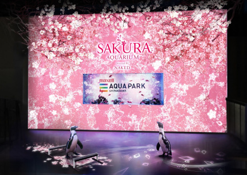 SAKURA AQUARIUM Directed BY NAKED (Aqua Park Shinagawa)