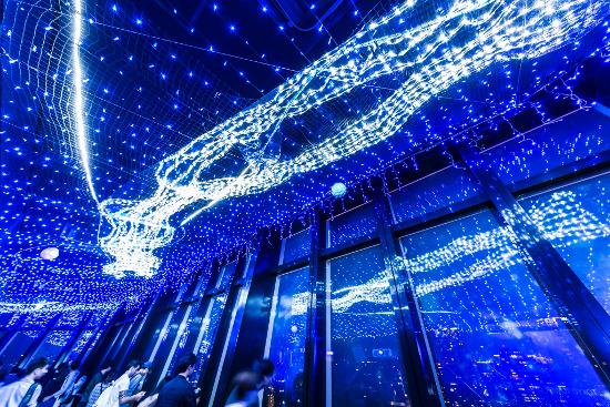 """Tokyo Tower """"Milky Way Illumination"""""""