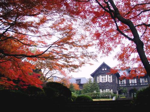 ≪Autumn Leaves Viewing Spot≫ Kyu-Furukawa Gardens