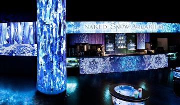 NAKED Snow Aquarium (Aqua Park Shinagawa)