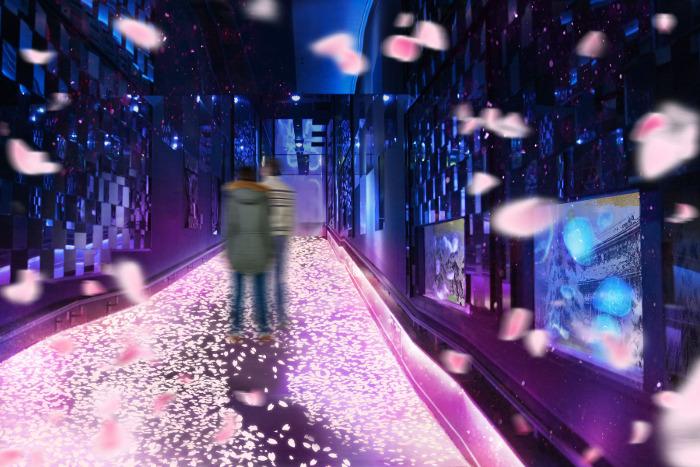 "Interactive Art Event ""Cherry Blossoms and Jellyfish"" (Sumida Aquarium)"