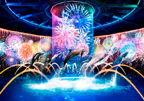 Hanabi Aquarium Directed by NAKED (Aqua Park Shinagawa)