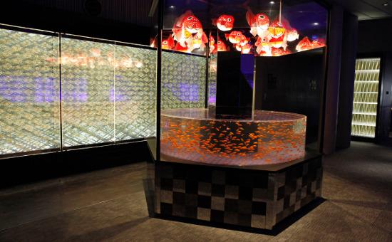 Goldfish Love Exhibition