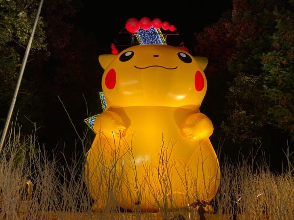 SAGAMIKO ILLUMILLION (Lake Sagami Pleasure Forest Illumination)