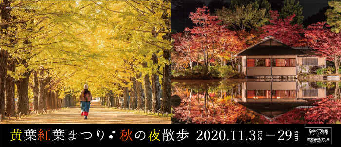 "Showa Kinen Park ""Autumn Leaves Festival and Night Walk"""