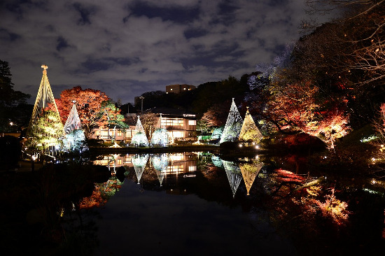 "Higo Hosokawa Garden ""Autumn Leaves Light up -Lights of Higo-"""