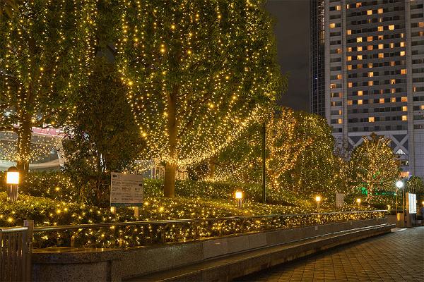 Tokyo Dome City Winter Illumination